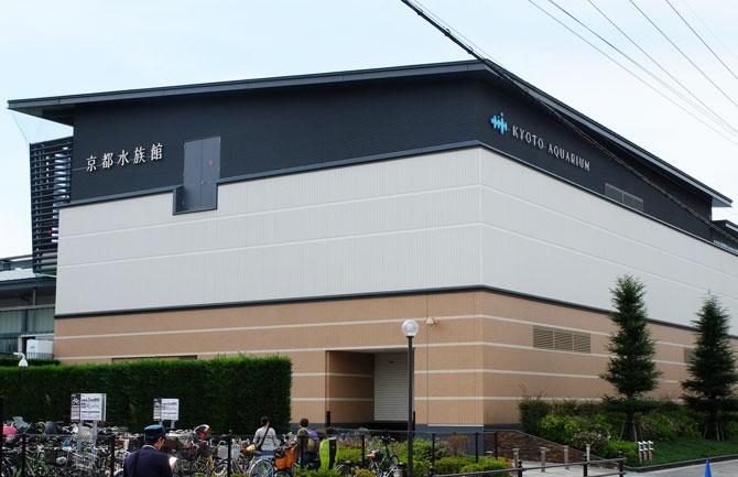 京都水族館は子供と行きたい | 京都駅からバスで