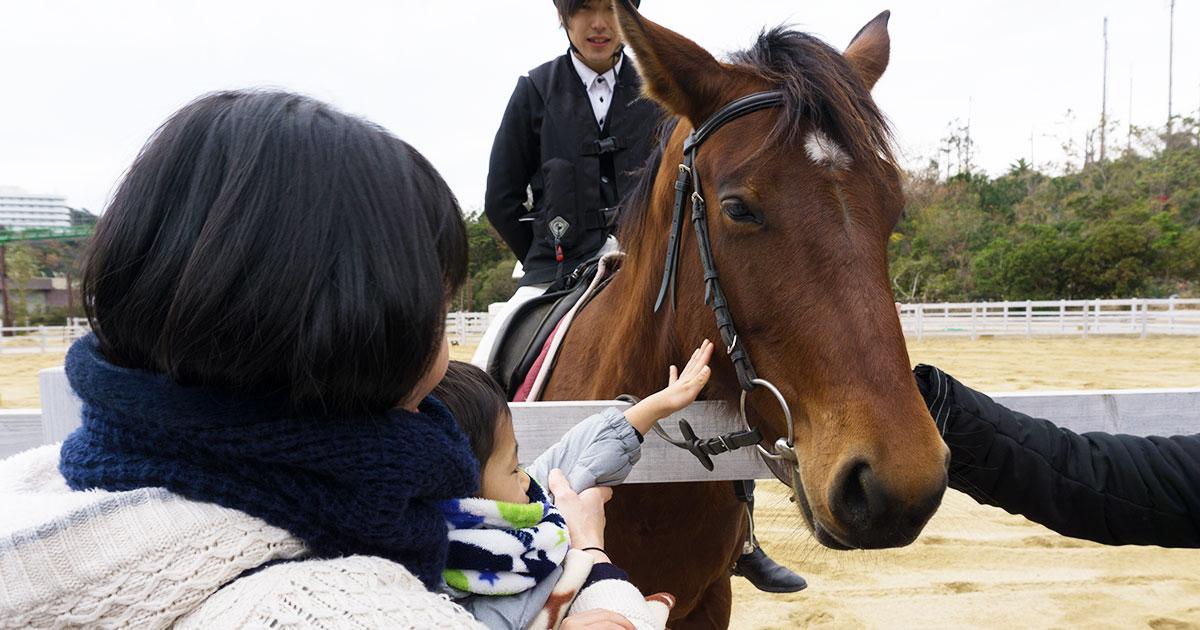 アドベンチャーワールド 馬
