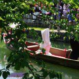 瀬戸の花嫁・川舟流し